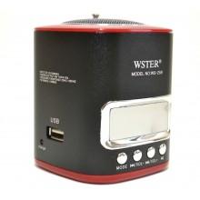 Портативный цифровой спикер WSTER WS-259
