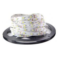 Светодиодная лента SMD3528 LED Strips DC12V 60LED IP65